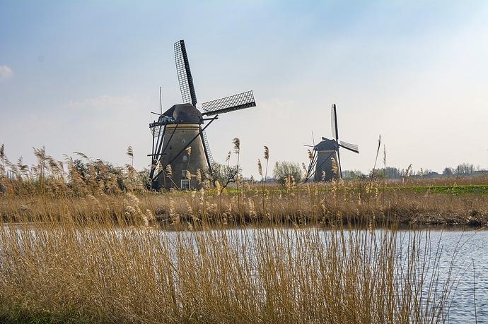 Geschäftsführerhaftung - Mühle im Feld